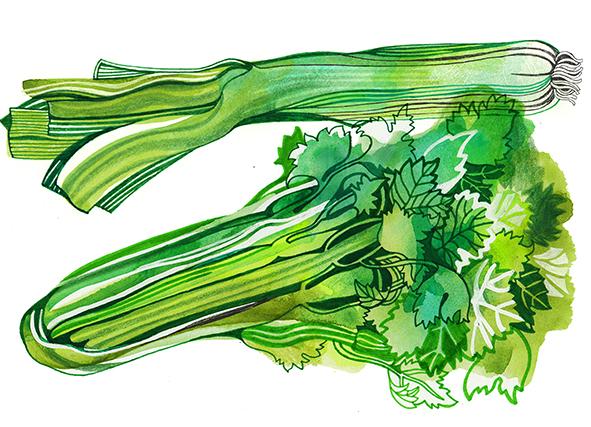20th september, leak and celery