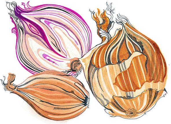 onions 2 copy